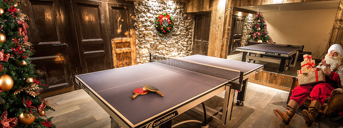 Table Tennis for Christmas