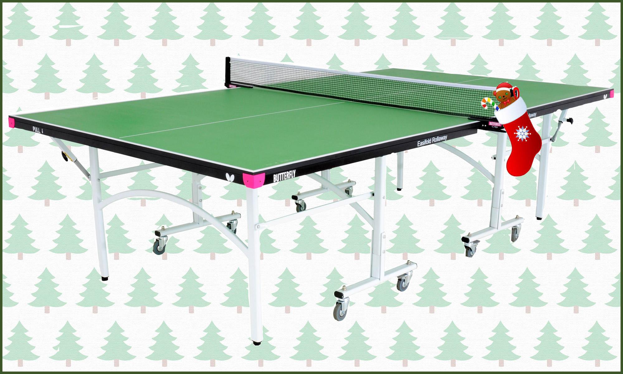 Butterfly Easifold 19 Indoor Table Tennis Table